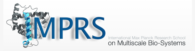 Doctoral student positions available at the IMPRS on Multiscale Bio-Systems