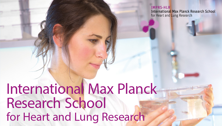 PhD positions - IMPRS for Heart and Lung Research