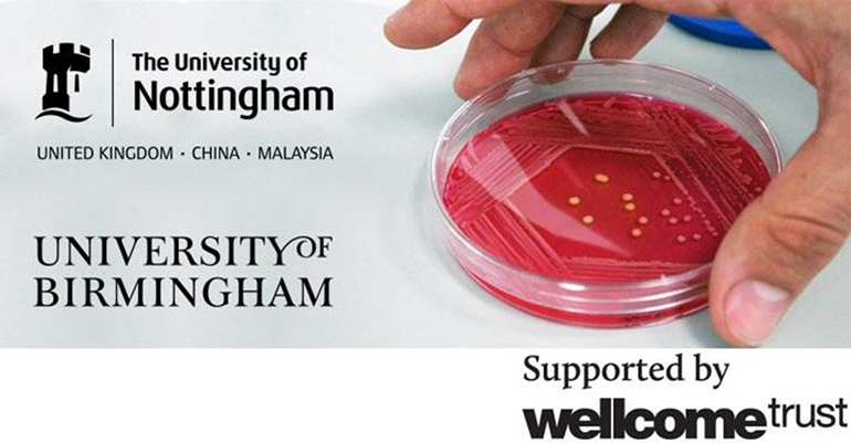 Fully funded Wellcome Trust PhD studentships