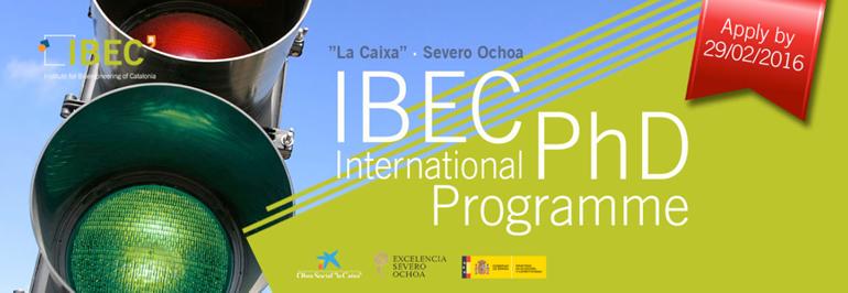 """IBEC International PhD Programme """"la Caixa"""" · Severo Ochoa fellowships"""