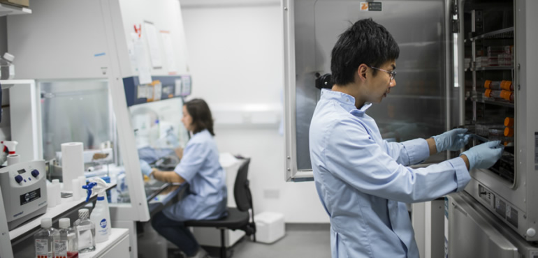The College of Medicine and Veterinary Medicine is an international leader in basic-to-clinical translational research.