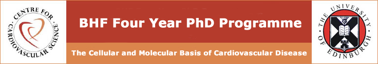 The British Heart Foundation 4-year PhD programme in Cardiovascular Science