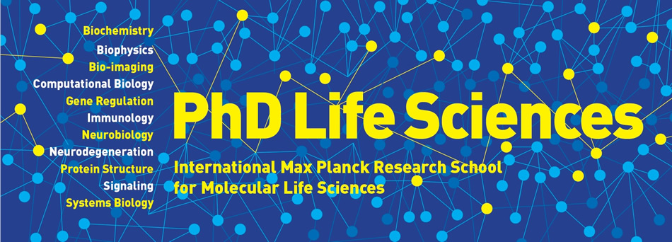 Find A PhD : PhD Student Positions at International Max