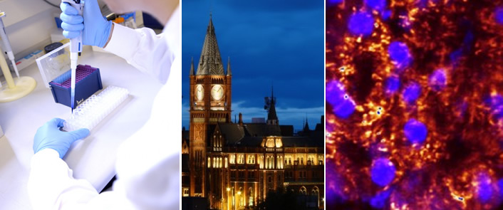 4-year Wellcome Ph.D. Programme in Cellular and Molecular Physiology