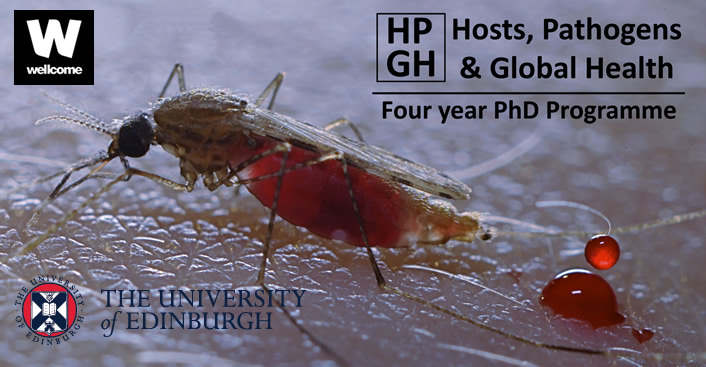 University of edinburgh phd thesis archive