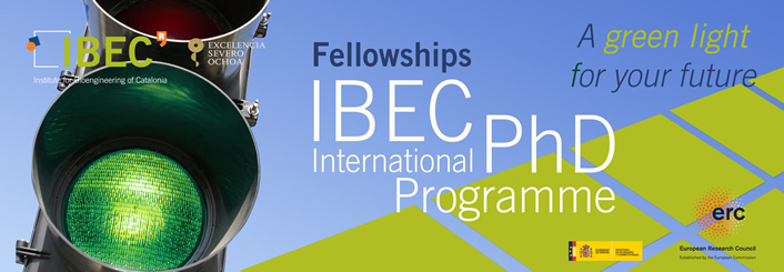 IBEC Severo Ochoa International PhD Programme