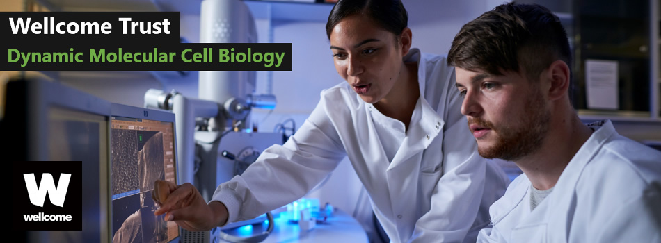 Study for a PhD in Dynamic Molecular Cell Biology in Bristol