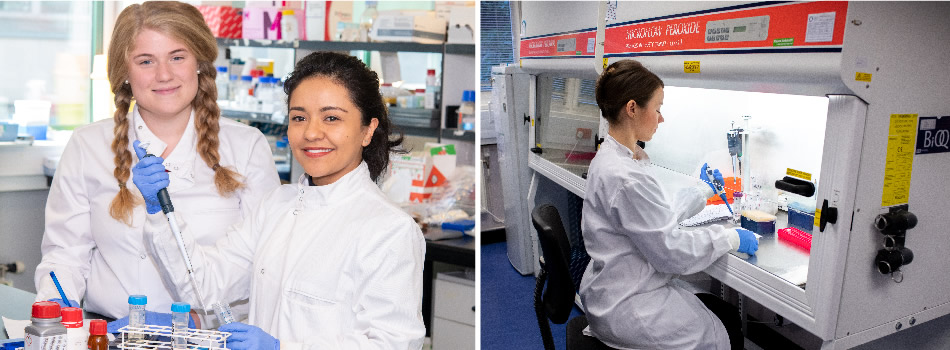 MRC four-year PhD programme in Human Genetics, Genomics and Disease