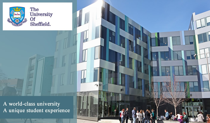 Renowned for excellence - A world-class University 930796ffdff
