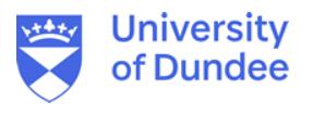 School of Humanities, University of Dundee