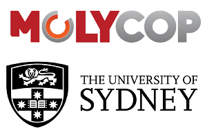 School of Civil Engineering, University of Sydney